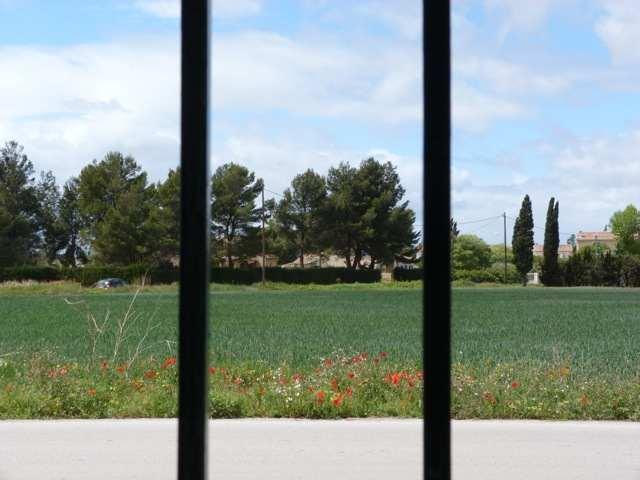 41 - Le jardin vu d'une fenêtre... photos reçues P1100510