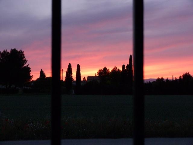 41 - Le jardin vu d'une fenêtre... photos reçues P1100810