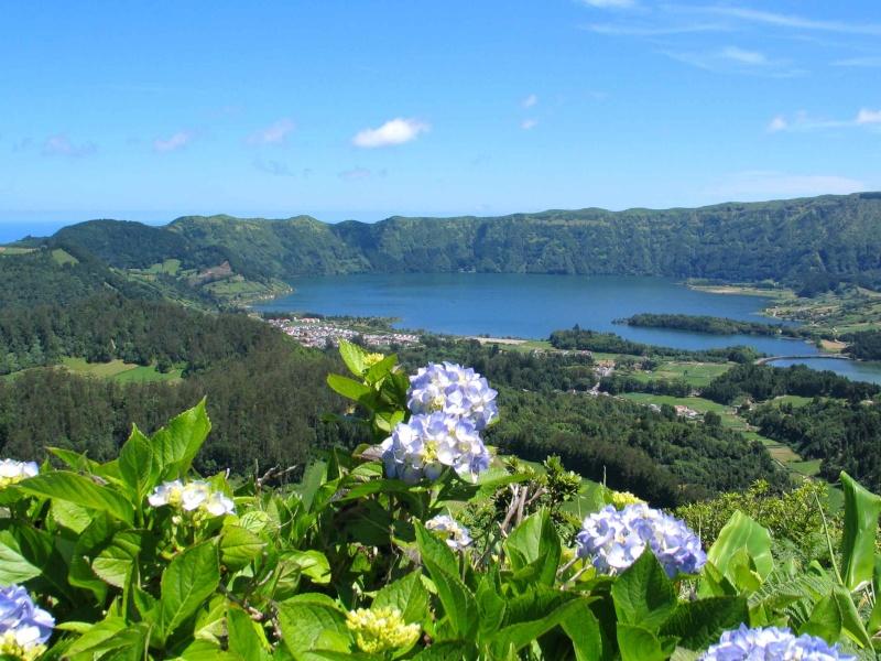 Voyage aux Açores (Sao Miguel) : les platanthères Img_7411