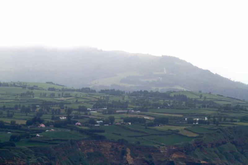 Voyage aux Açores (Sao Miguel) : les platanthères Img_9110