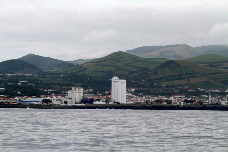 Voyage aux Açores (Sao Miguel) : les platanthères Img_9111