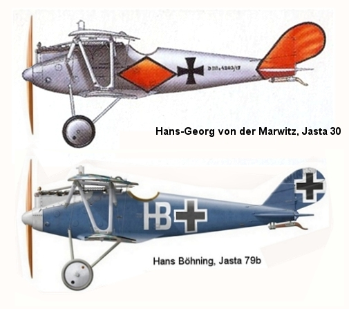 Deux Pfalz D-III / D-IIIa et demi,  1/72 _doc_p27