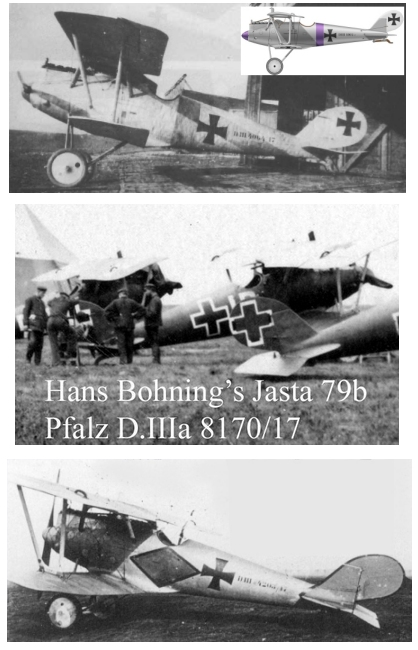 Montage: deux Pfalz D-III / D-IIIa et demi,  1/72 _doc_p31
