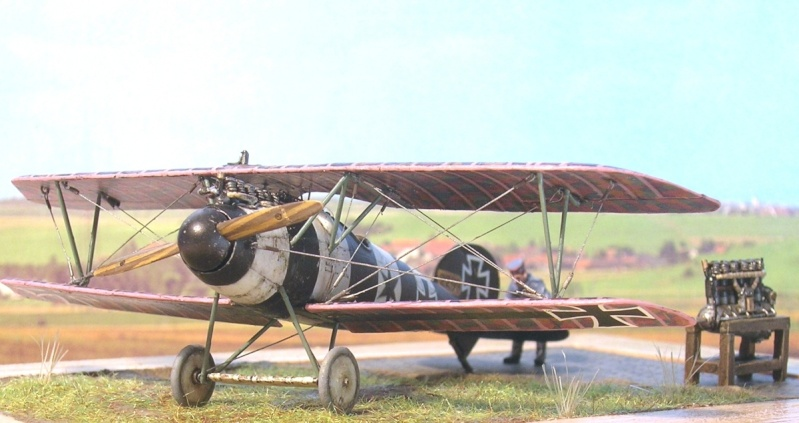 Albatros D-V 1/72 Albatr10