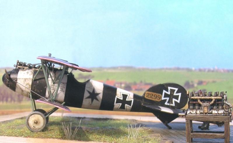 Albatros D-V 1/72 Albatr12