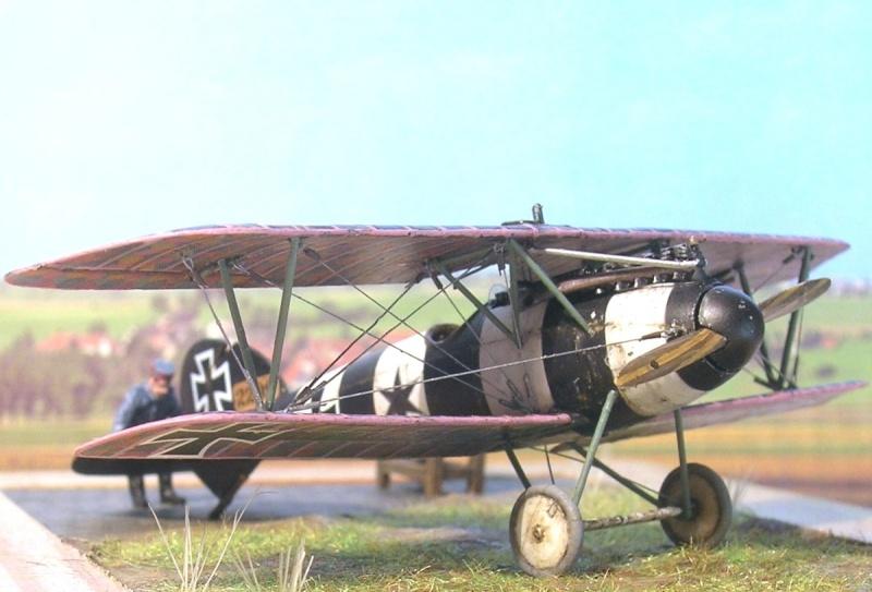 Albatros D-V 1/72 Albatr15