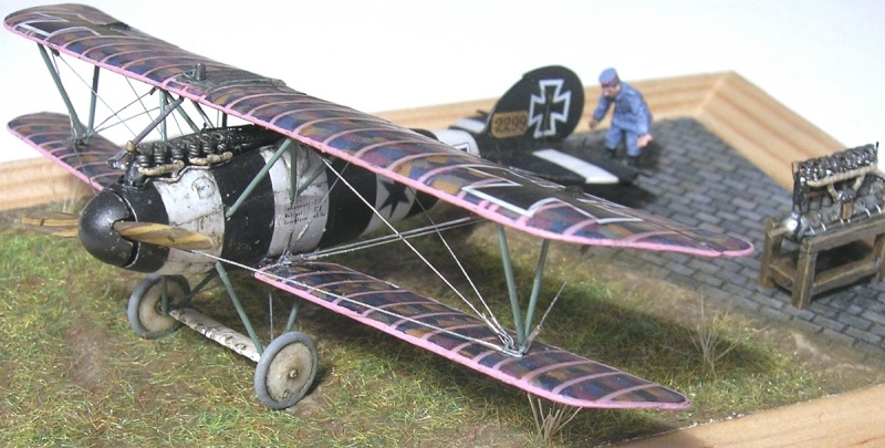 Albatros D-V 1/72 Albatr19