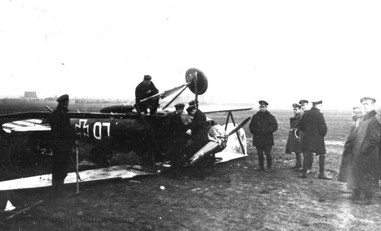 Deux Pfalz D-III / D-IIIa et demi,  1/72 - Page 4 Albatr30