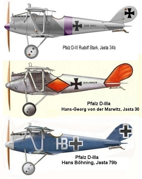 Montage: deux Pfalz D-III / D-IIIa et demi,  1/72 Image410
