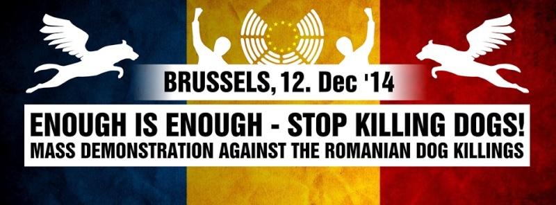 Rassemblement de Bruxelles - le 12-12-2014 12-1210