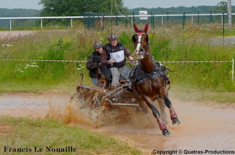 CCA - Lisieux - Juin 2014 - Clip d'images et Photos des concurrents (fin du reportage) 09-fra10