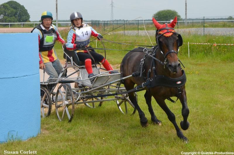 CCA - Lisieux - Juin 2014 - Clip d'images et Photos des concurrents (fin du reportage) 14-sus10