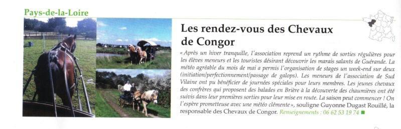 Les chevaux de Congor ! Articl10