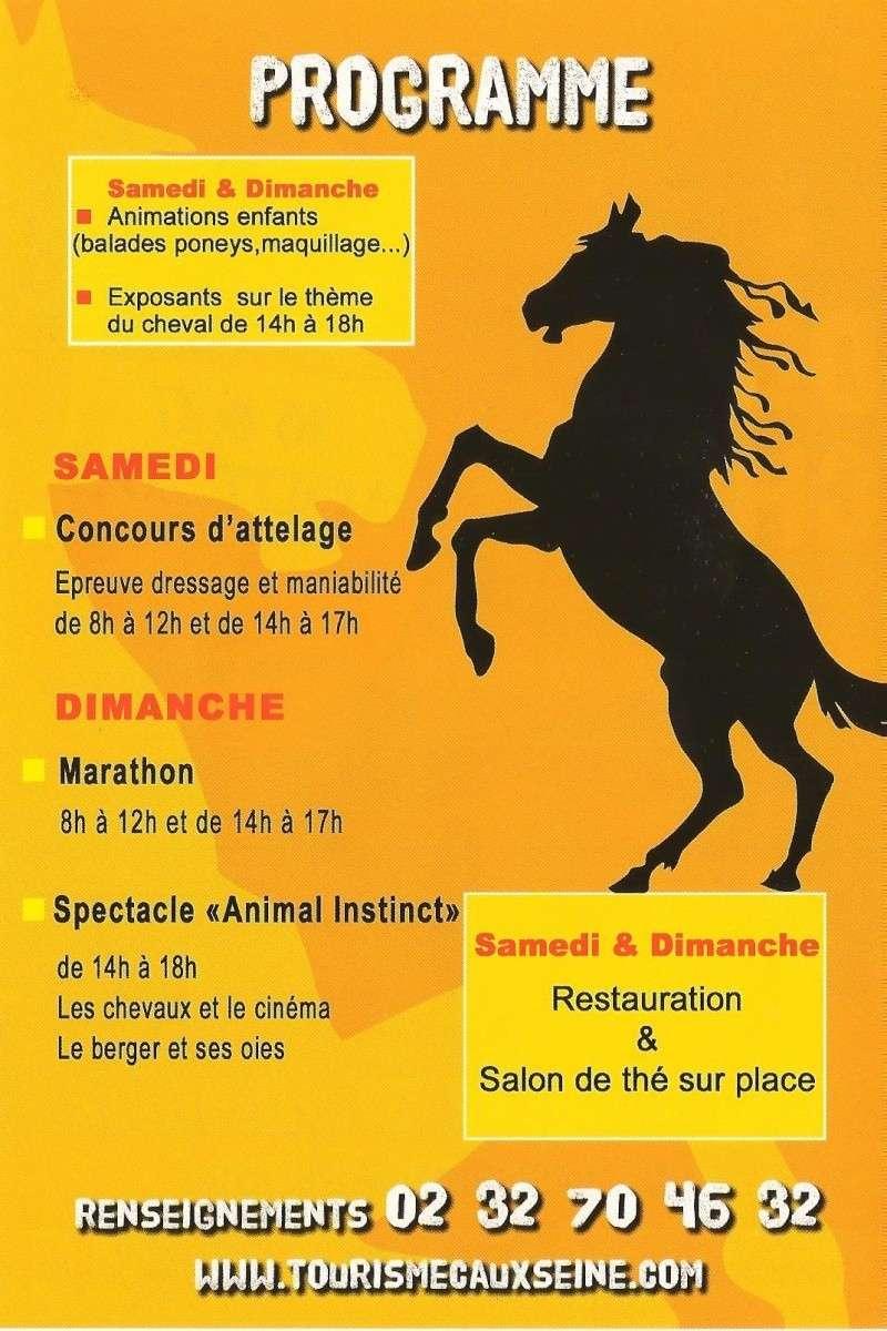 Du 15 au 17 août 2014 - Concours d'attelage à Gruchet le Valasse Progra11