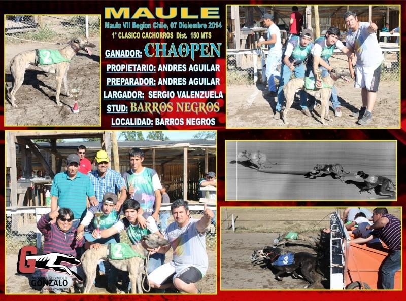 DOMINGO 07 DICIEMBRE, CLÁSICOS MAULE, PARA TERMINAR EL AÑO CON TODO ¡¡¡¡¡¡¡¡ 1-clas26