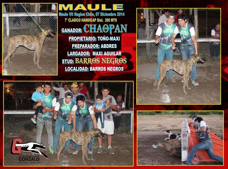 DOMINGO 07 DICIEMBRE, CLÁSICOS MAULE, PARA TERMINAR EL AÑO CON TODO ¡¡¡¡¡¡¡¡ 8-clas26