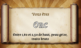 Groupe d'aventuriers n°1 Orc10