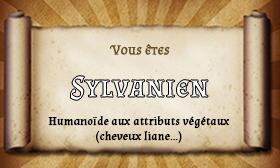 Groupe d'aventuriers n°2 Sylvan10