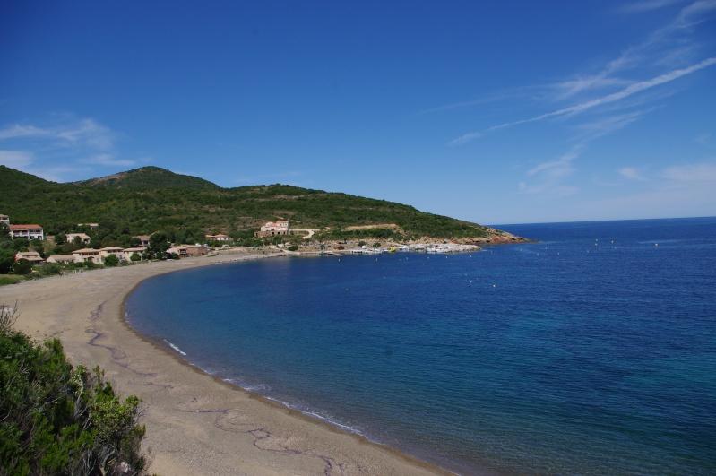 Corsica 2014 - Saison 4 ... & compte-rendu - Page 7 Imgp1310