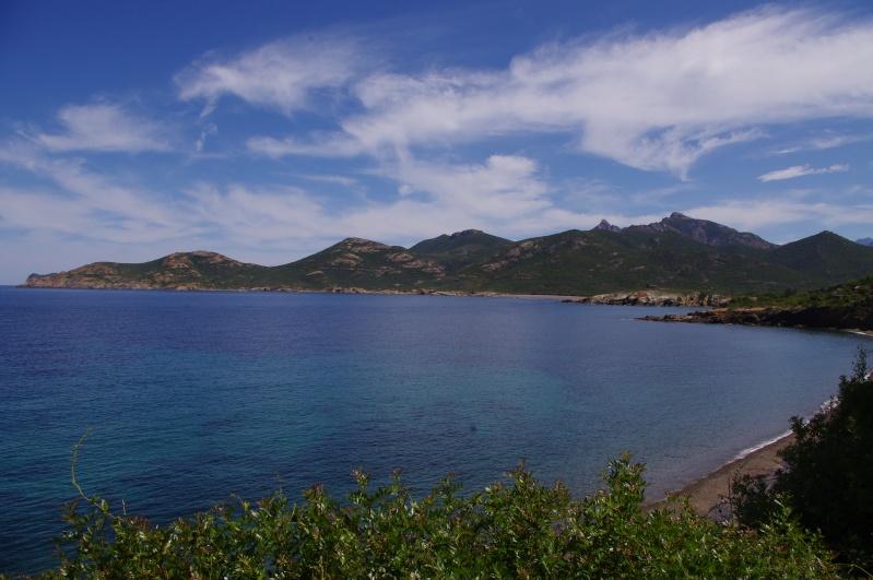 Corsica 2014 - Saison 4 ... & compte-rendu - Page 7 Imgp1311