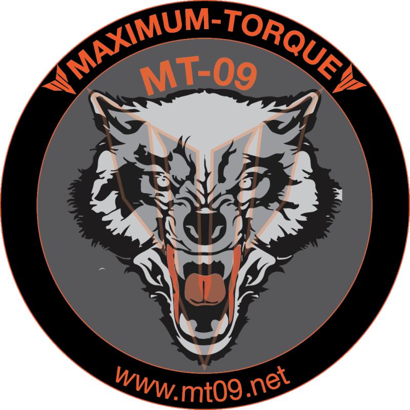quel animal représenterait/symboliserait le mieux la MT09 - Page 3 Mt09wo17