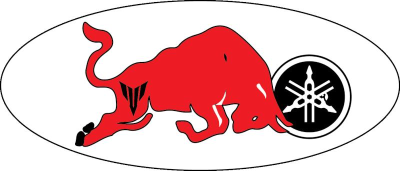 quel animal représenterait/symboliserait le mieux la MT09 - Page 4 Taurea10