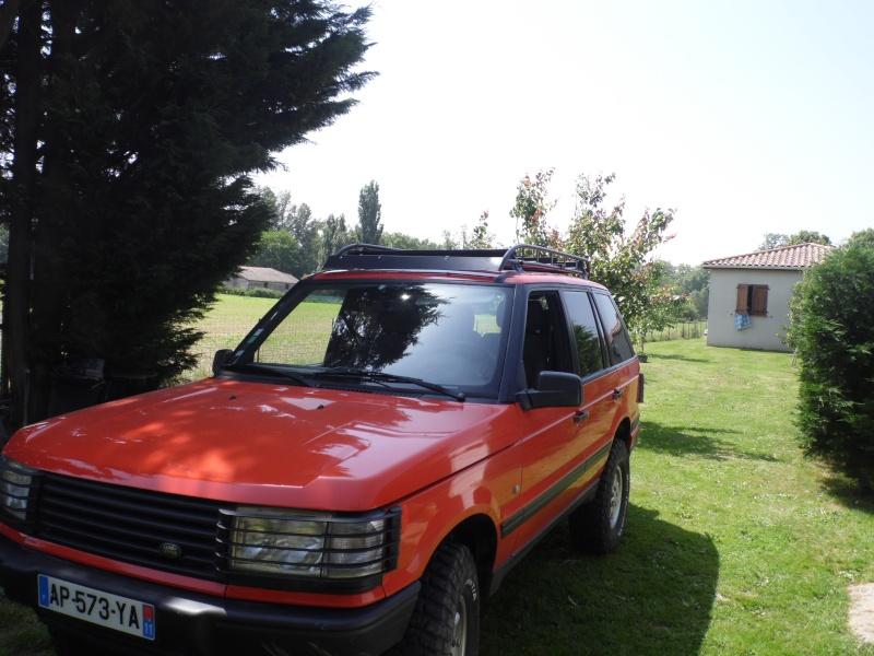 Pet orange P381210