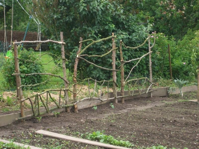 clôture du potager  Imgp0210