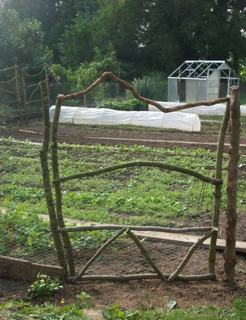 clôture du potager  Imgp0211