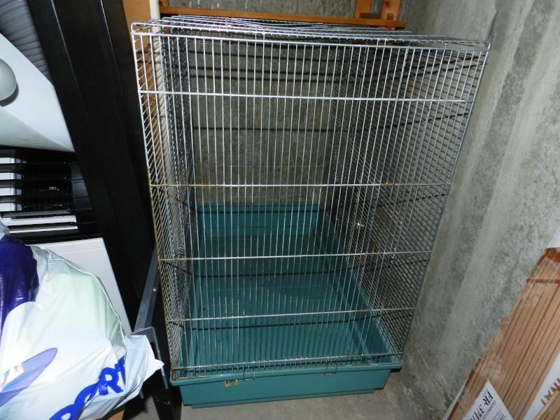 Vends cage Jenny (20 €) 001_810