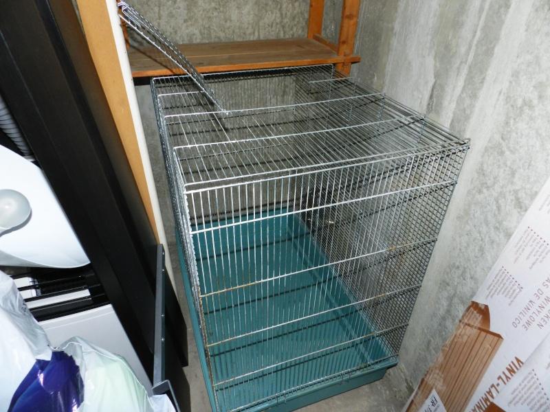 Vends cage Jenny (20 €) 006_410