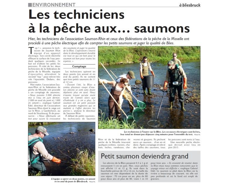 la BLIES - Page 3 Saumon10