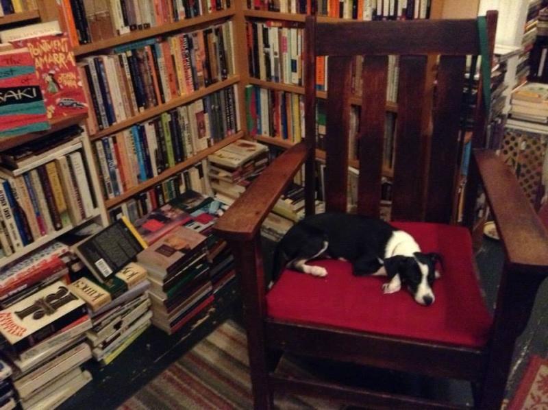 Vos adresses de librairies insolites... - Page 7 Ab230