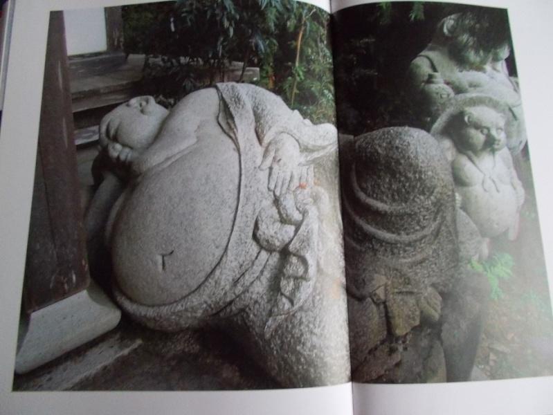 LC Japon - Page 14 Abb25