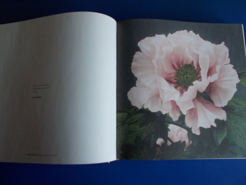 LC Japon - Page 14 Aete210