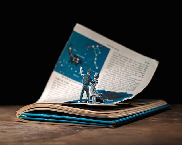[Art] Livres objets-Livres d'artistes - Page 7 B21