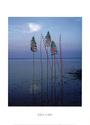 [Land Art] Andy Goldsworthy, Nils-Udo... [INDEX 1ER MESSAGE] - Page 2 Kc431b10