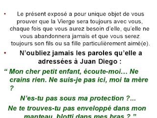 PIER GIORGIO CARIA.... GIORGIO BONGIOVANNI... ET LEURS AMIS....  LES ACROGLYPHES DANS LE MONDE  - Page 2 Viewer26