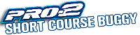 Pro2-Short Course Buggy