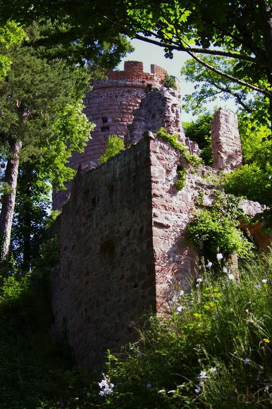 Les trois châteaux de Ribeauvillé  3_ch_r11