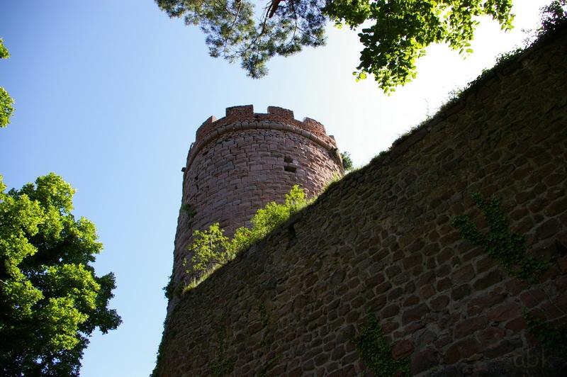 Les trois châteaux de Ribeauvillé  3_ch_r12