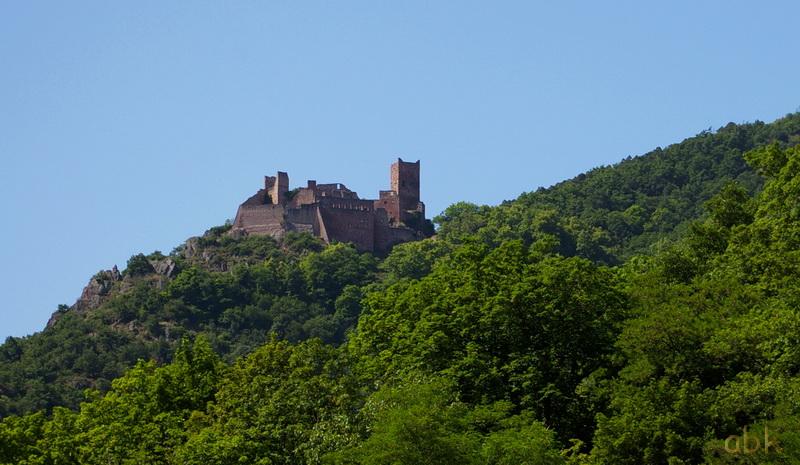 Les trois châteaux de Ribeauvillé  3_ch_r17