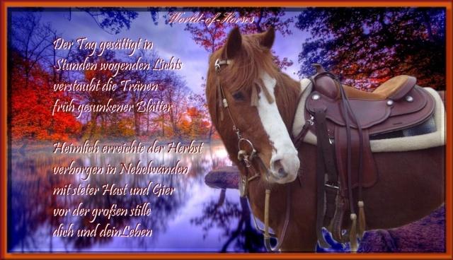 Herbstgrüße Bnl64g11