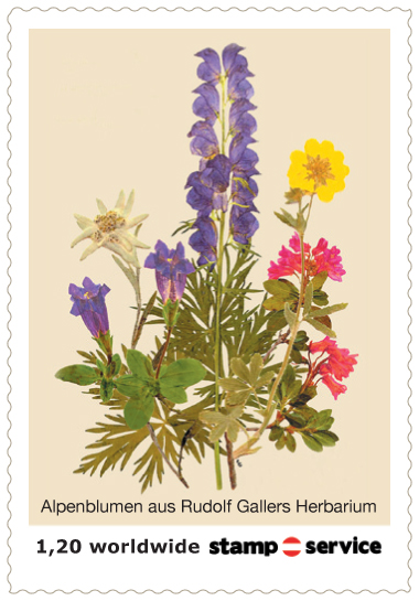 1.privaten Briefmarken Österreich 013_fr10