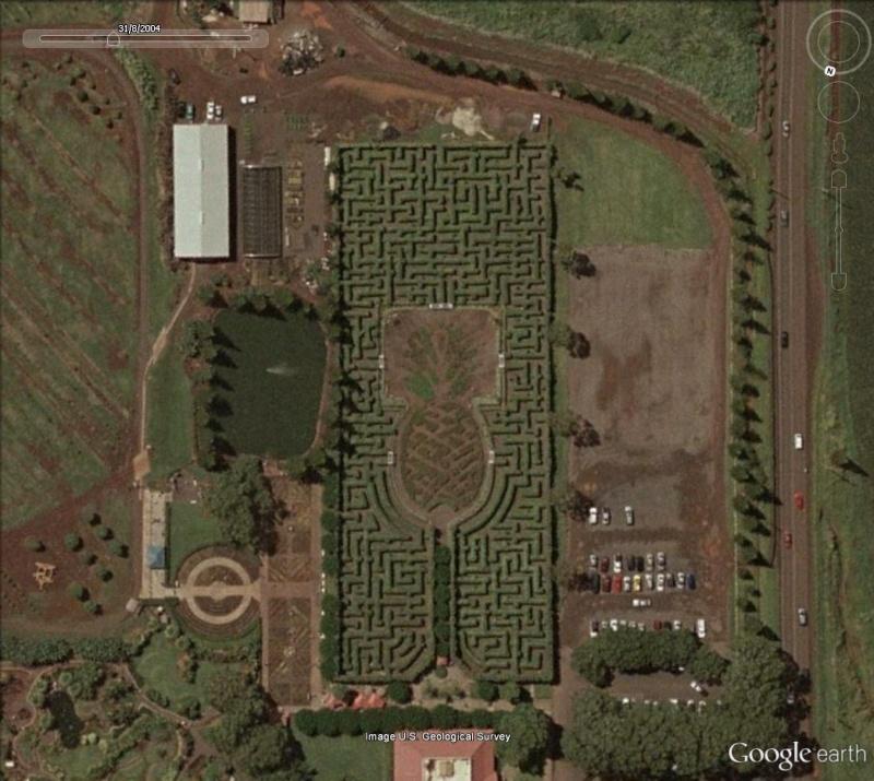 Les labyrinthes découverts dans Google Earth Ananas10