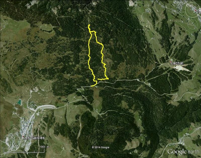 La tourbière des Saisies: un petit bout de Scandinavie en Savoie Les_sa10