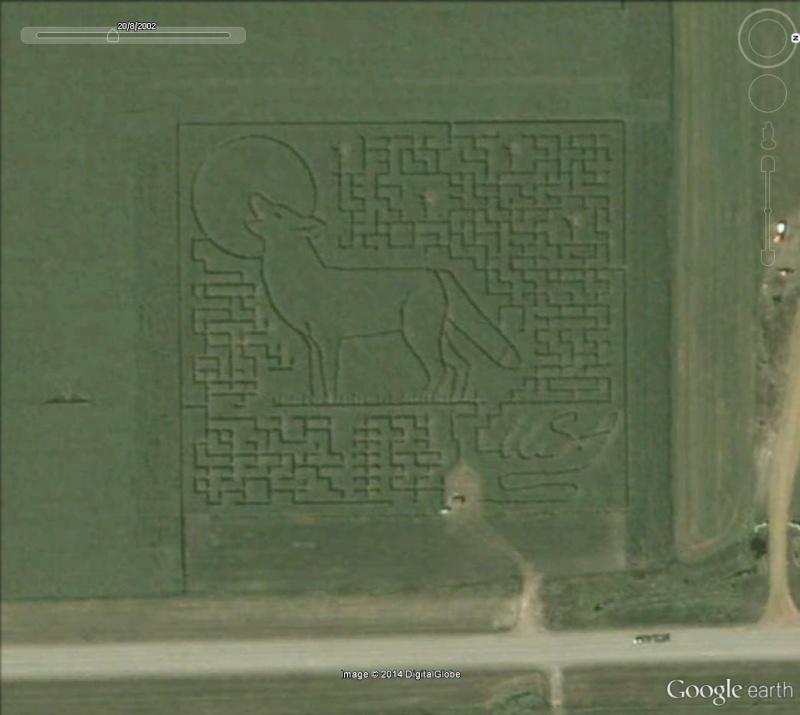 Les labyrinthes découverts dans Google Earth Loup10