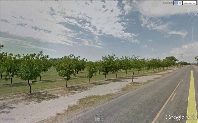 """Ecriture """"Eat Pecans"""", Las Cruces, Nouveau Mexique - USA Pacani12"""