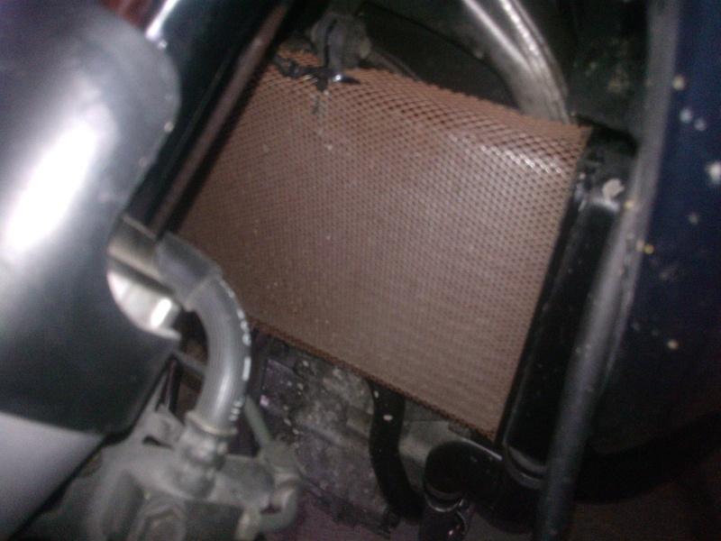 vos grilles de radiateur ( toutes motos ) achetées ou fabriquées !!! Wp_00122