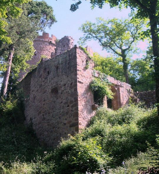 Les trois châteaux de Ribeauvillé  Dsc05710